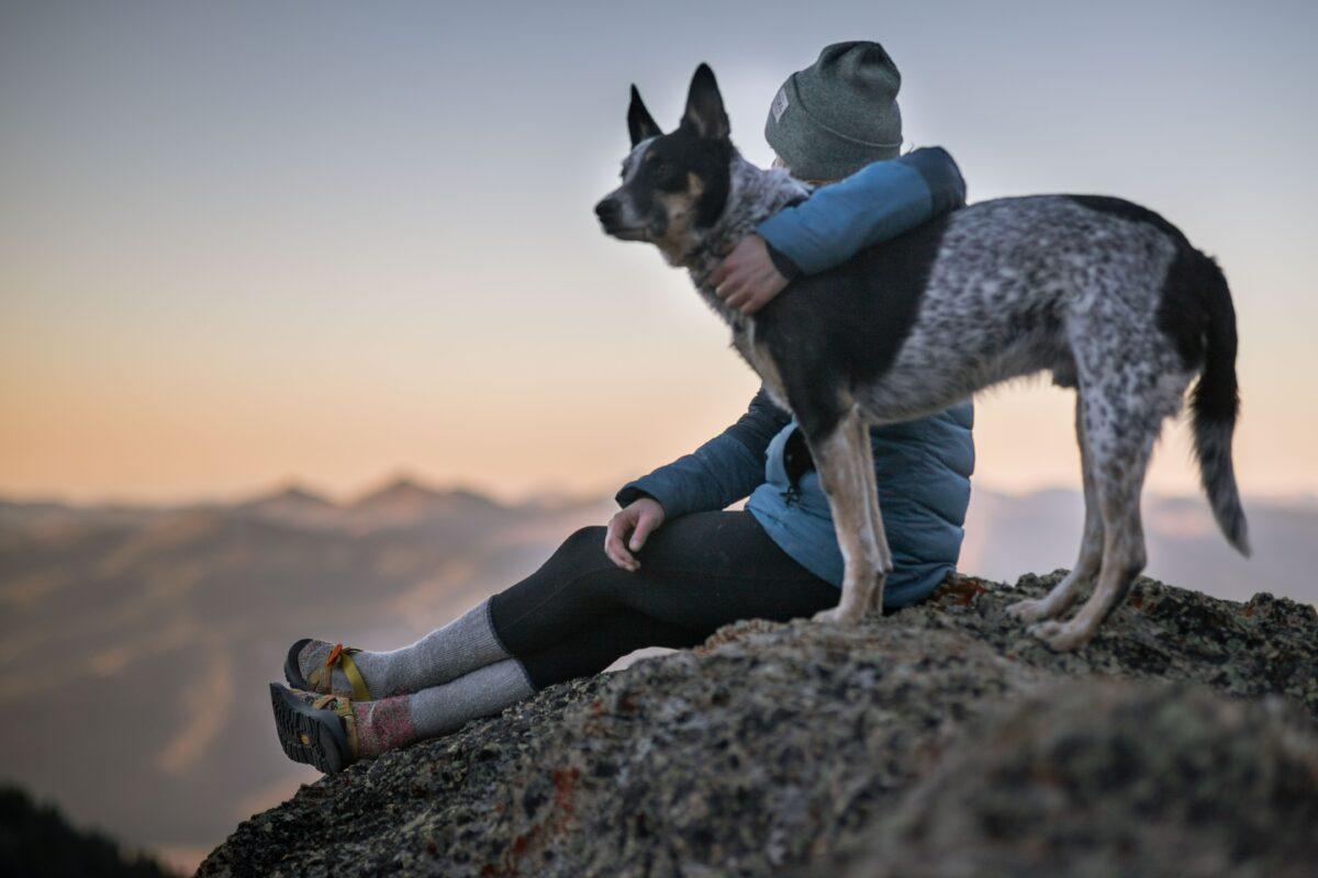 Ένα από τα ανεκπλήρωτα όνειρα πολλών παιδιών αυτού του πλανήτη, δεν ήταν άλλο από την απόκτηση του πολυπόθητου κατοικιδίου. Για άλλους ήταν αυτός ο σκύλος που θα τρέχατε μαζί για τρελές εξερευνήσεις, για άλλους μια παιχνιδιάρα γατούλα και για τους πιο ριψοκίνδυνους ίσως ένα λιοντάρι... (ποτέ κανείς δεν χάρηκε πραγματικά με τα ψαράκια μέσα στη γυάλα). Παρόλα αυτά, η επιθυμία αυτή δεν παρέμεινε τίποτα περισσότερο από ένα απωθημένο, που πολλοί προσπάθησαν να εκπληρώσουν ήδη πηγαίνοντας να σπουδάσουν.
