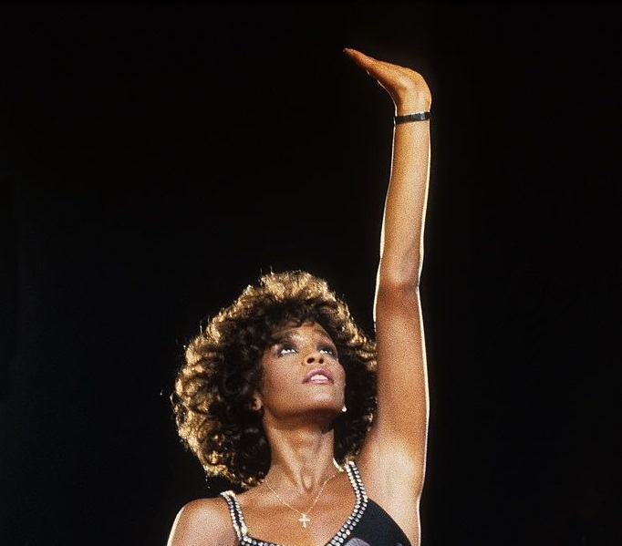 https://www.google.com/url?sa=i&url=https%3A%2F%2Fwww.gettyimages.com%2Fdetail%2Fnews-photo%2Fwhitney-houston-performs-on-stage-ahoy-rotterdam-news-photo%2F138976712&psig=AOvVaw2Fa5NVi46632sdByzYxu28&ust=1604664795919000&source=images&cd=vfe&ved=0CAIQjRxqFwoTCMCW5LKw6-wCFQAAAAAdAAAAABAD