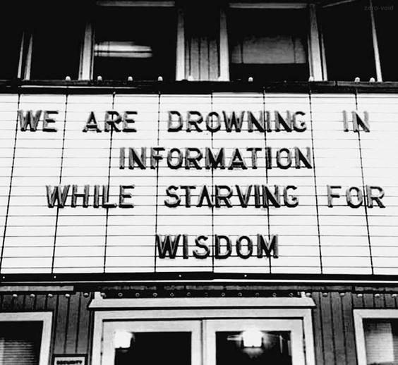 social media quote